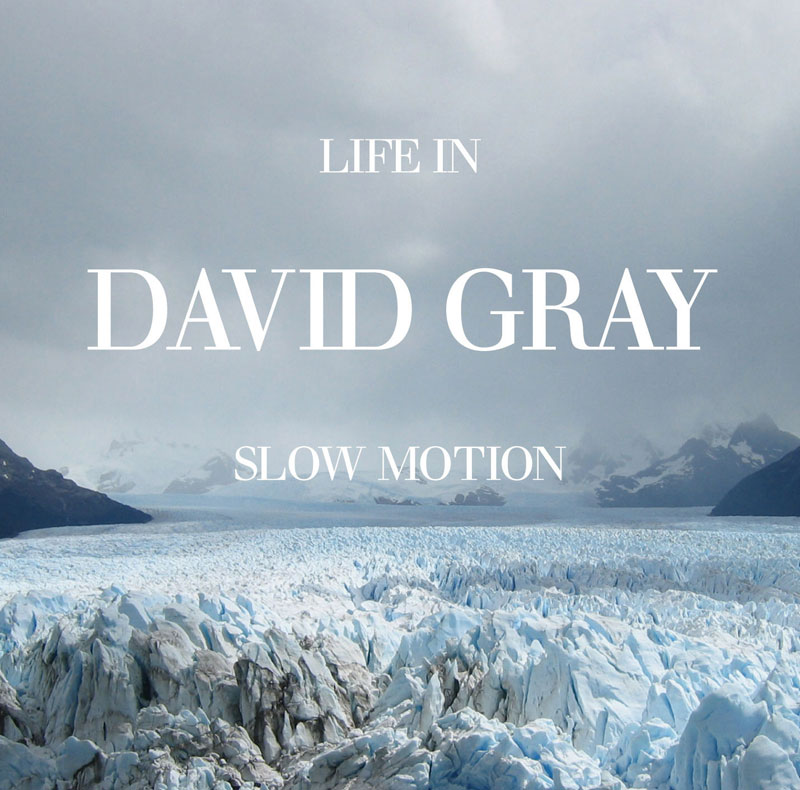 DavidGray_LifeInSlowMotion